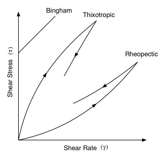 Bingham Plastic, Rheopectic and Thixotropic Fluids